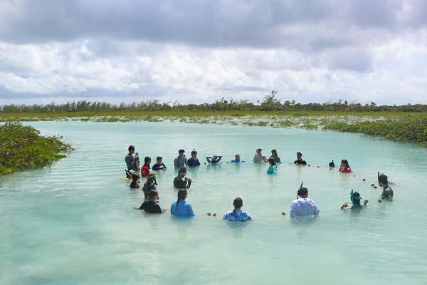 island-school