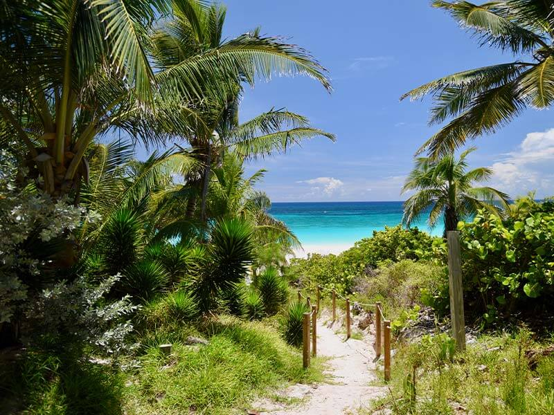 Private Charter flights to the Bahamas View